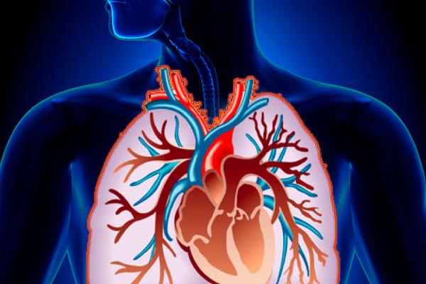 Предотвращение туберкулёза: что необходимо знать